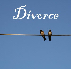 Birds on a wire image
